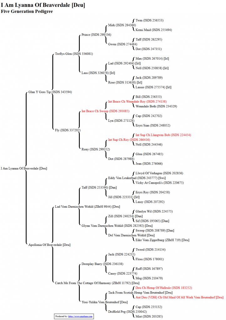 anadune-five-generation-pedigree